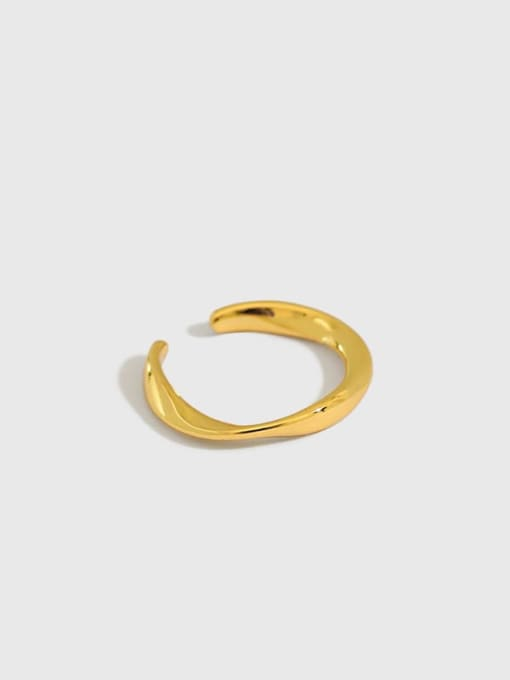 Dak Phoenix 925 Sterling Silver Irregular Minimalist Stud Earring[Single] 0